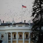 WP узнала о подготовке Белого дома к приостановке работы правительства :: Политика :: РБК