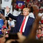 Демократическая партия США в спорах ищет соперника Трампу :: Политика :: РБК