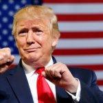 СМИ узнали о новой попытке демократов запустить импичмент Трампа :: Политика :: РБК